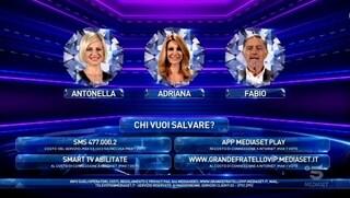 Grande Fratello Vip 2020, nominati Fabio Testi, Adriana Volpe e Antonella Elia