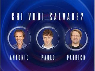 GFVip: eliminate Fernanda Lessa e Sara Soldati, nominati Patrick, Paolo Ciavarro e Antonio Zequila