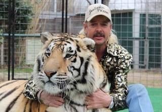 Tiger King è un caso: 64 milioni di famiglie nel mondo hanno visto il documentario