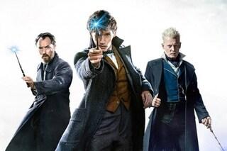 Quando uscirà Animali fantastici 3: Johnny Depp confermato, sono previsti altri due film