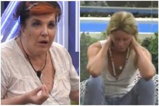 """Patrizia De Blanck a Flavia Vento: """"Fatti ricoverare, sei pazza! Sei tu che stai male non i cani"""""""