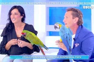 """Enzo Salvi: """"Dopo l'aggressione subita, il pappagallo Fly è tornato a volare e ha trovato l'amore"""""""