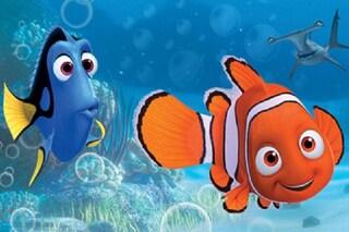 10 curiosità su Alla ricerca di Nemo: perché il protagonista ha una pinna atrofica