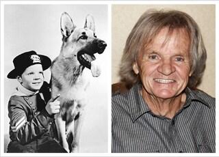 Morto l'attore Lee Aeker, era il protagonista bambino de Le avventure di Rin Tin Tin