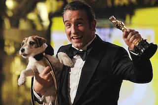 Addio ad Uggie: morto a 13 anni il cane protagonista del film Premio Oscar 'The Artist'