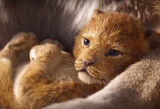 'Il re leone' 2019, trailer da record: è il video della Disney più visto online