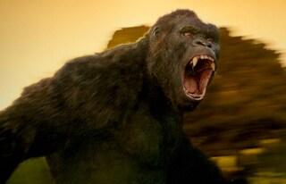 """Curiosità """"Kong: Skull Island"""": il regista si è ispirato a """"Indiana Jones"""" e """"Jurassic Park"""""""