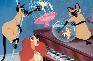Disney censura Lilli e il vagabondo, la canzone razzista dei gatti siamesi non sarà nel remake