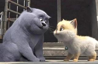 """""""Birba - Micio Combinaguai"""", il film d'animazione di Gary Wang sbarca al cinema dal 18 luglio"""