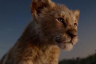 """Il live action de """"Il Re Leone"""" è il più visto di sempre, ha superato anche """"Frozen"""""""