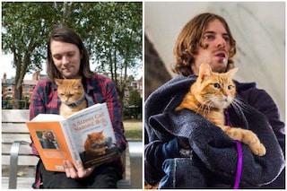 """È morto Bob, il gatto del film """"A spasso con Bob"""" con Luke Treadaway"""