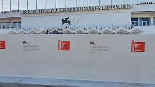 Mostra di Venezia 2020, tutte le norme anti Covid: un muro separa il red carpet dal pubblico