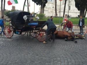 """Botticelle Roma Raggi Vietata circolazione temperature pari superiori 30 gradi"""""""
