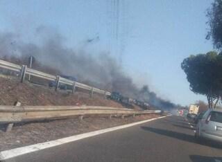 Incendio sulla Pontina, cade un albero e blocca il traffico: code chilometriche