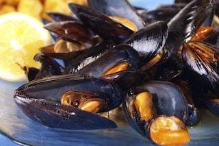 Pesca illegale a Formia, sequestrati 70 chili di cozze: 15mila euro di multa a quattro pescatori