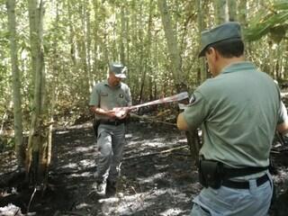 Viterbo, 39enne arrestato mentre appiccava un incendio in un bosco