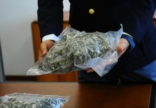 Pietralata, 25enne beccato mentre cerca di nascondere 10 chili di marijuana nel giubbotto: arrestato