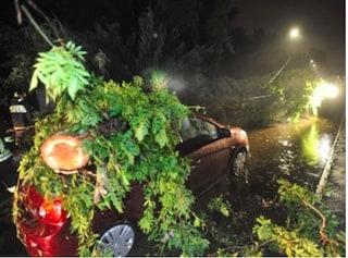 Maltempo ai Castelli Romani, albero cade su un'auto ad Albano: ferito un ragazzo, è grave