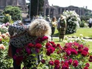 Immagini del Roseto comunale di Roma (Fonte: La Presse)