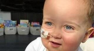 Dall'ospedale Bambino Gesù di Roma: il trapianto ad Alex verrà effettuato a metà dicembre