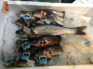 Controlli al mercato dell'Esquilino: sequestrati 110 chili di pesce e prodotti scaduti