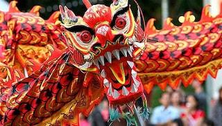 Capodanno cinese 2019: oggi iniza l'anno del maiale. Come e quando si festeggerà a Roma