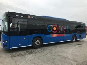 Bus Cotral – foto Cotral