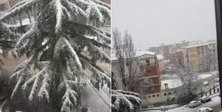 Viterbo e provincia sotto la neve: il sindaco chiude le scuole