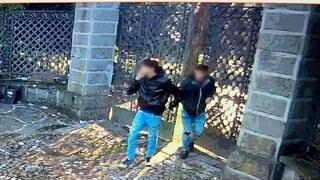 Roma, ladri entrano in casa e i proprietari postano il video su Facebook: arrestato un ragazzo