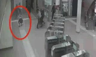 Estorsioni, rapine e pestaggi ad Acilia: arresta baby gang, tre minorenni in carcere