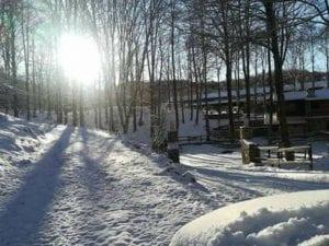 Neve sul Monte Livata (Foto di Meteo Roma e Castelli)