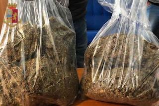 Marijuana mista ad aglio e profumo: lo stratagemma per camuffare il tipico odore della cannabis