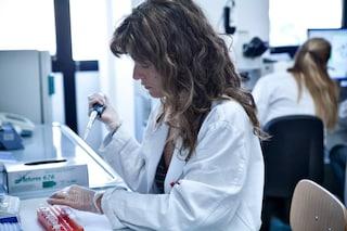 """A Roma il meeting degli ematologi: """"Prossimi 10 anni decisivi per sconfiggere linfomi e leucemie"""""""