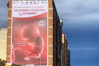 """Roma, torna pubblicità antiabortista che insulta le donne: """"Cara Greta salviamo i cuccioli d'uomo"""""""