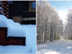 """Foto dal gruppo Facebook """"Meteo neve Roma e Castelli"""""""