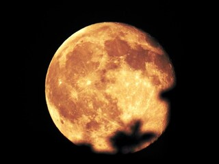 Roma, la Luna piena Fragola sta per dominare il cielo della Capitale: ecco dove e quando vederla