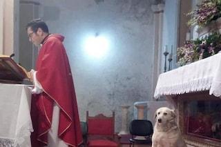 """Frosinone, il prete celebra la messa insieme al cagnolino che fa da """"chierichetto"""""""