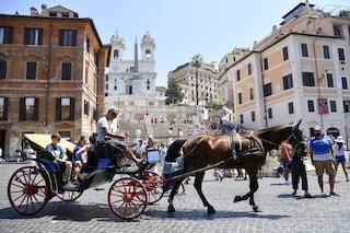 Caldo a Roma, Virginia Raggi firma l'ordinanza di stop alle botticelle con temperature da 30 gradi
