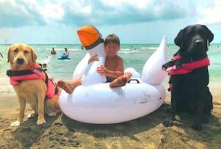 Tarquinia, bimbo di sette anni rischia di annegare in mare: salvato da due cani eroi