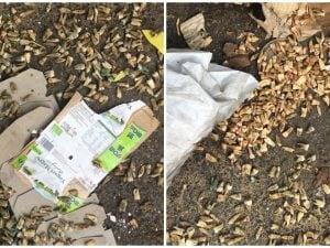 I denti ritrovati tra i rifiuti a Montesacro