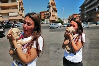 Il cucciolo ritrovato: Silvia rivede la sua Maya dopo otto anni