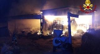 Rieti, incendio devasta azienda agricola: intrappolati dalle fiamme morti molti animali