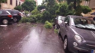 Maltempo su Roma: strade allagate e alberi caduti. Più di cento interventi in poche ore