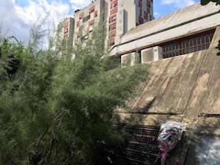 13enne si uccide a Roma, messaggi d'odio sul telefono: s'indaga per istigazione al suicidio