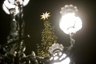 Il 5 dicembre la cerimonia di illuminazione dell'albero di Natale di piazza San Pietro