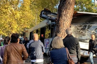 """Roma, autobus si schianta contro un albero. Una passeggera: """"Travolti da una pioggia di vetri"""""""