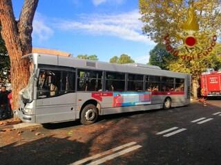 Autobus contro albero in via Cassia: il bilancio finale è di 67 feriti, sospetti su sciacalli