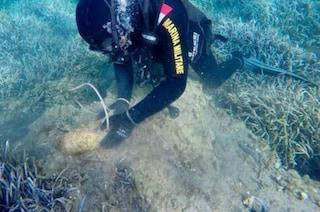 Palmarola, scoperte quattro bombe in mare: l'intervento dei palombari della Marina Militare