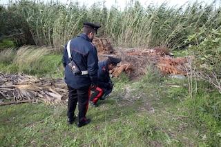 Mistero del cadavere fatto a pezzi nei boschi: si indaga su tuta As Roma che avvolgeva lo scheletro