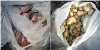 Roma, sequestrati 30 chili di carne e pesce in un ristorante di via Cassia